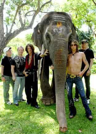 Aerosmith India